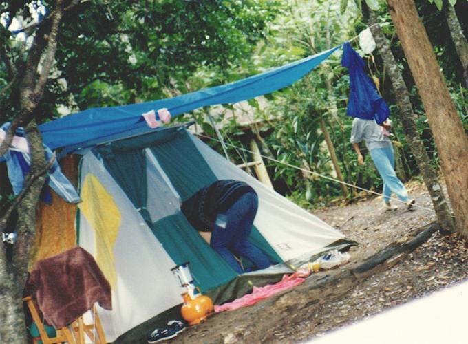 オーストラリア。Campping in Lamington national park.