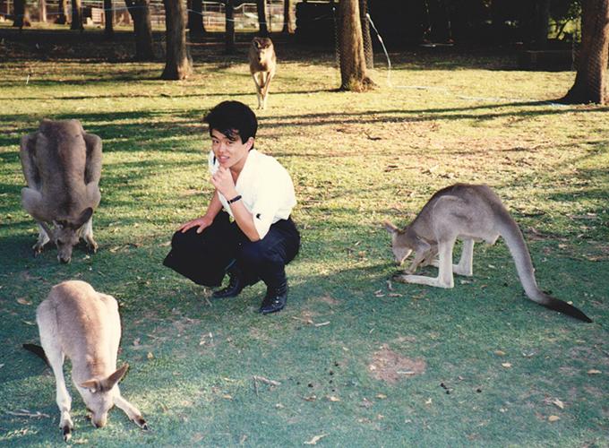 オーストラリア。Kangaroo