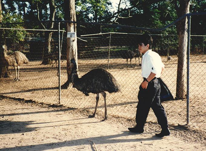 オーストラリア。follow an emu.