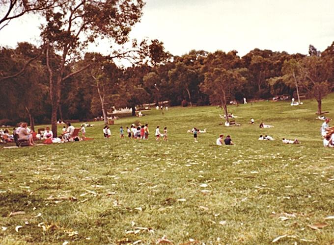 パース・西オーストラリア州。Kings Park and Botanic Garden in Perth, Western Australia.