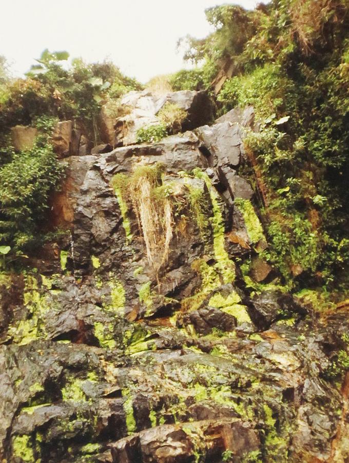 香港-九龍エリア。waterfall.