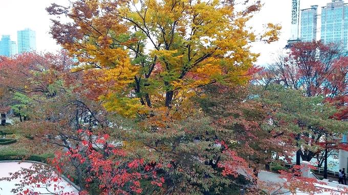 韓国・ソウル。秋の紅葉 - ロッテワールド・マジックアイランド(Lotte World.)