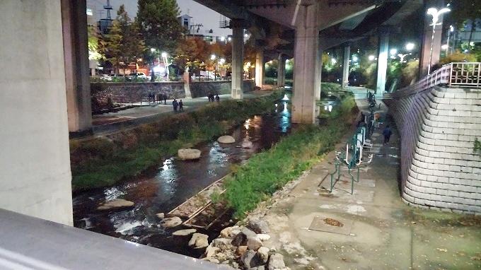 韓国。ソウル。高速道路の下の川 - ザ・グランドスイート(The Grand Suite Seoul.)