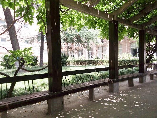 中国 上海外国語大学 パティオ。