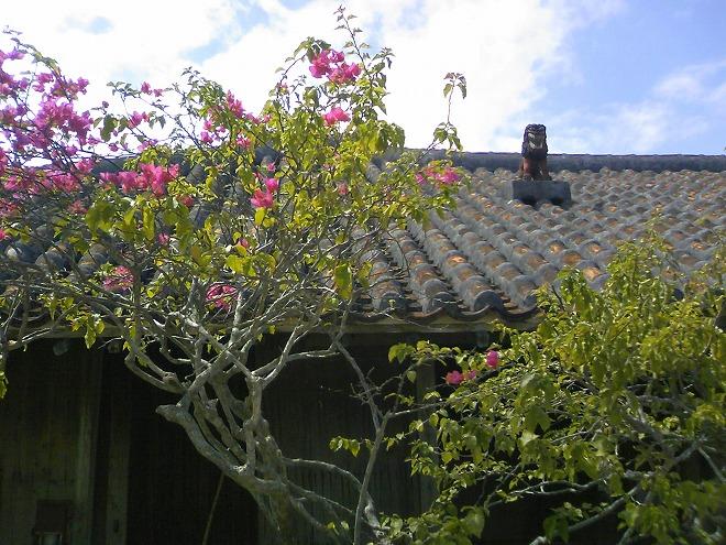 恩納村 琉球村 赤瓦の屋根にシーサー