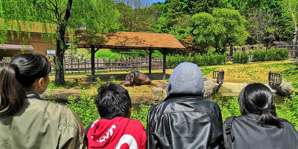 韓国ソウル大公園(ソウル動物園)