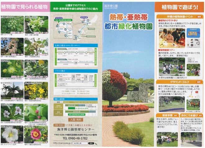 沖縄海洋博公園 熱帯・亜熱帯都市緑化植物園