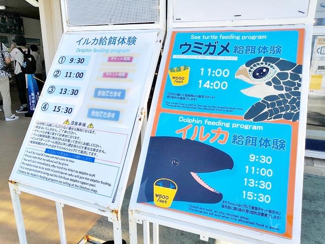 沖縄海洋博公園「オキちゃんショップ」餌やり体験の参加チケットの看板