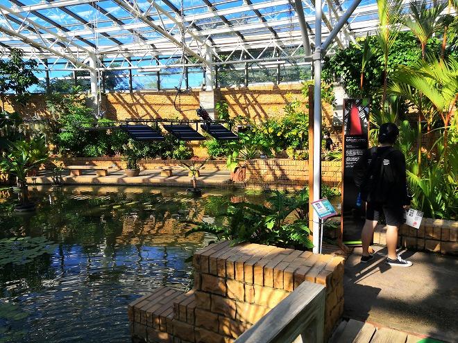 沖縄海洋博公園 熱帯ドリームセンター・遠見台
