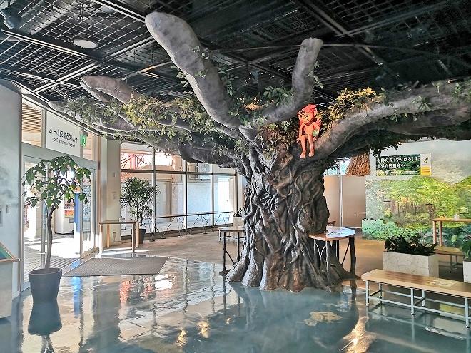 沖縄 - 海洋博公園「ハイサイプラザ」