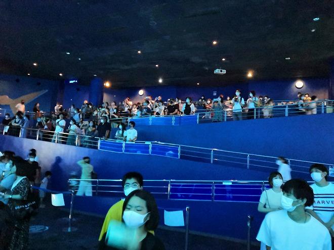 沖縄美ら海水族館「黒潮の海」を見る人達