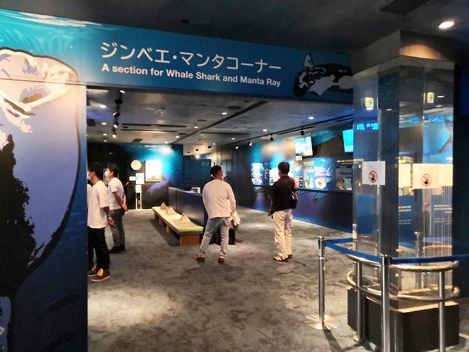 沖縄美ら海水族館「ジンベエ・マンタ コーナー」
