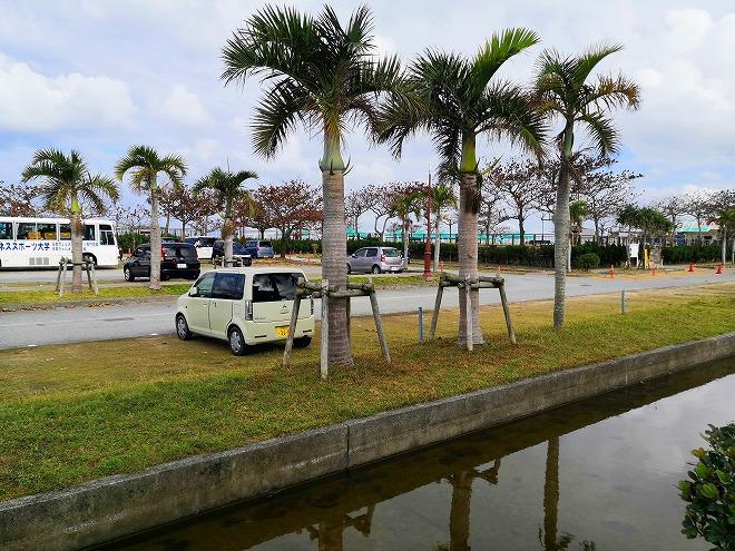 宜野湾市 沖縄コンベンションセンター トロピカルビーチ側