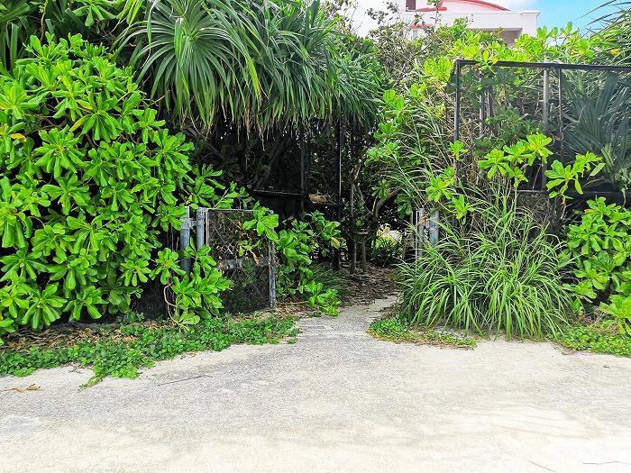 金武町 屋嘉ビーチの防砂壁の出入り口