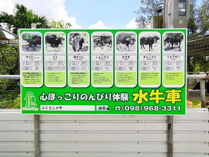 金武町 心ほっこりのんびり体験「水牛車」水牛紹介の看板